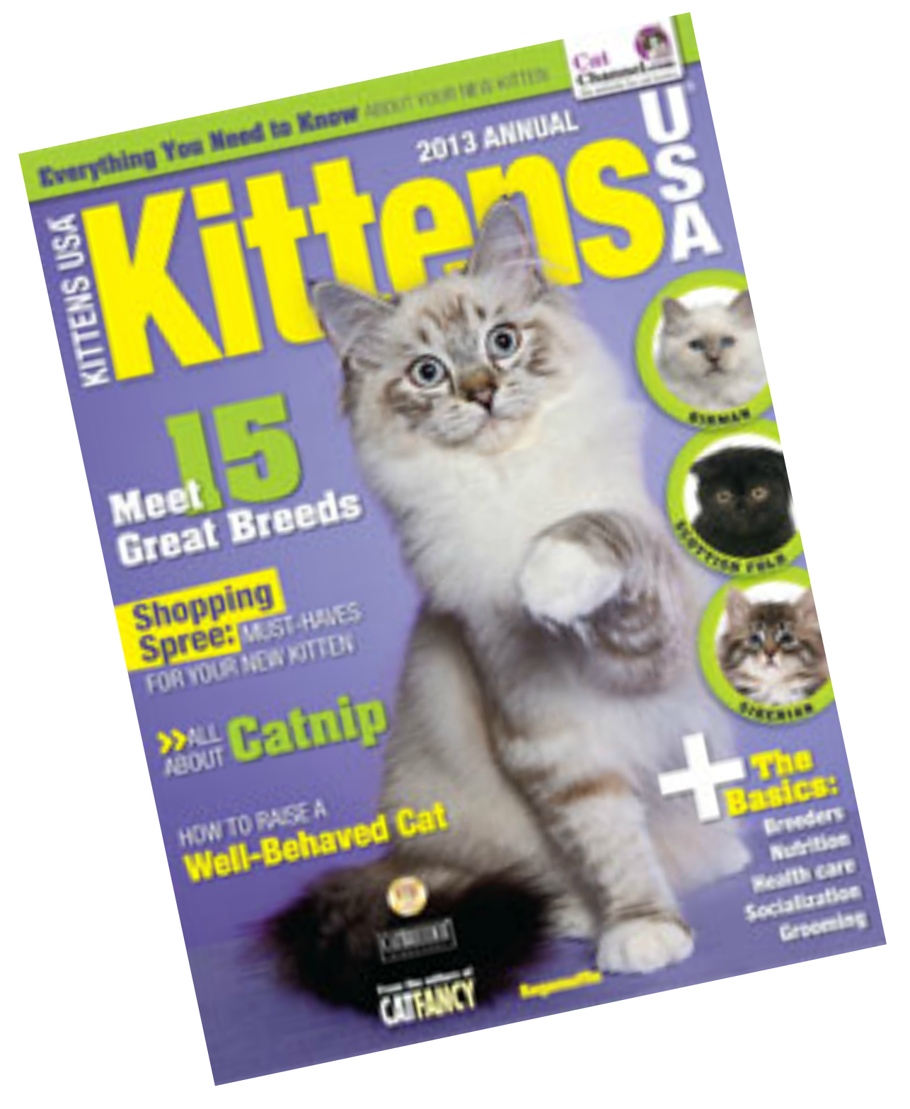Magazine2 KittensUSA