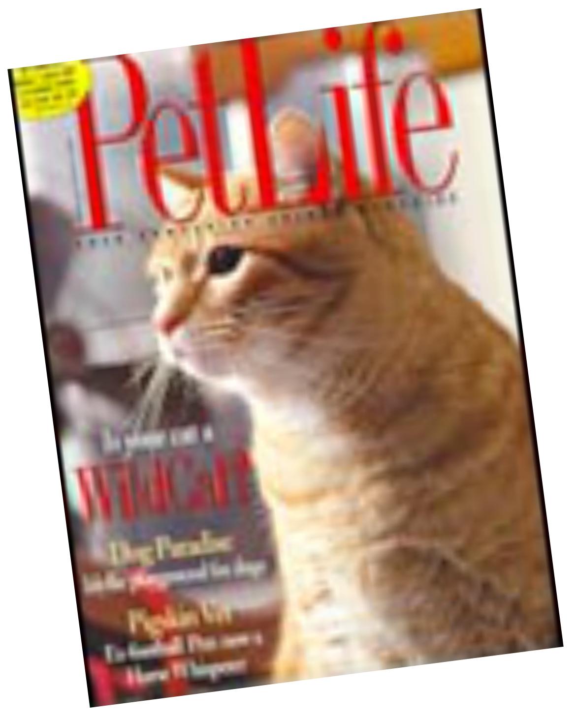 Magazine3 PetLife