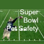 super bowl secondary