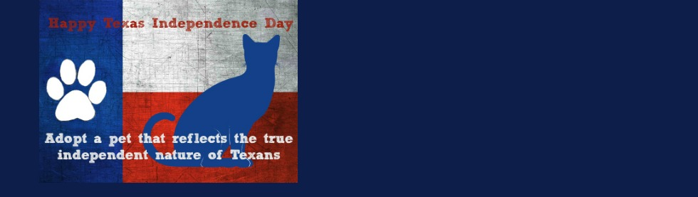 Texas Independence Day Featured
