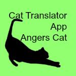 Translate secondary