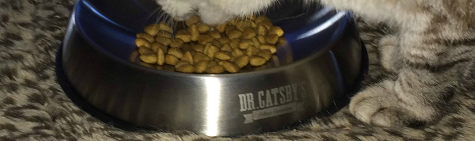 Dr Catsbys bowl featured