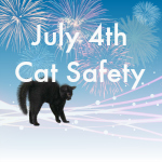 July 4th safty second featured