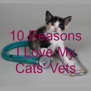 10 Reasons I Love My vet secondary featured