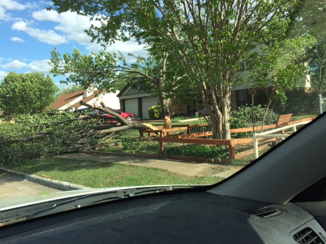 More straight-line wind damge in Flower Mound.