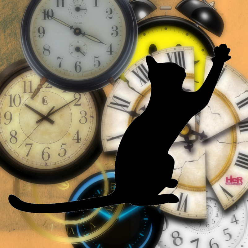 Cats hate when we spring forward